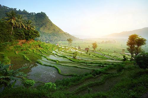 Tourisme en Asie : les lieux incontournables